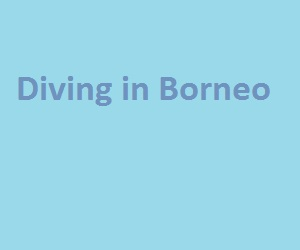 diving in Borneo
